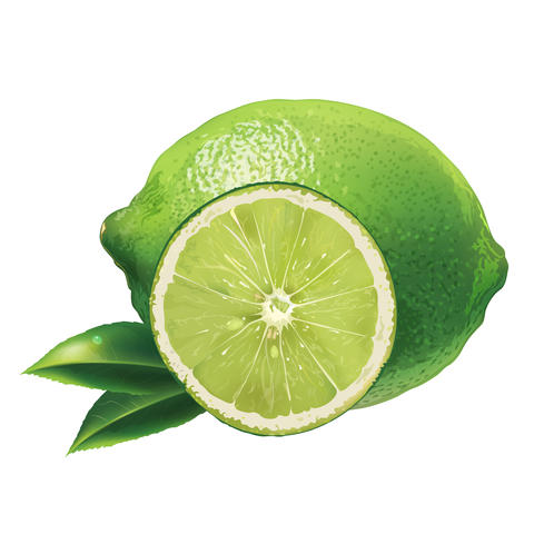 Lime on white background フォト