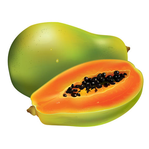 Papaya on white background フォト