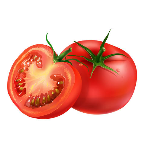 Tomato on white background フォト