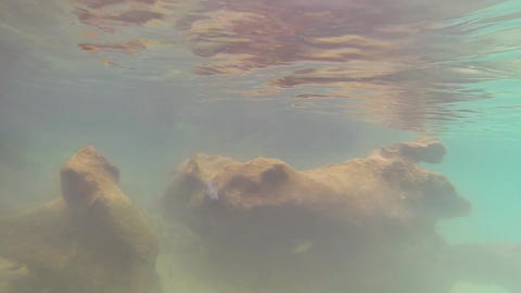 Underwater In The Gulf Of Mexico: Version #2 stock footage