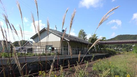 【4K】Shikanotani Station, Hokkaido/Japanese pampas grass/北海道・鹿ノ Footage
