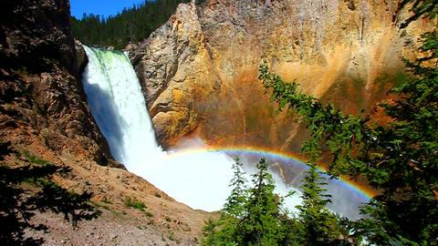 Yellowstone Lower Falls Landscape Footage