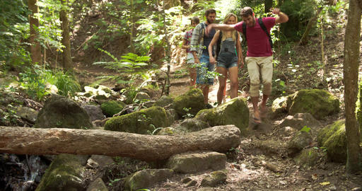 Friends walking through a forest, balancing on a fallen tree Footage