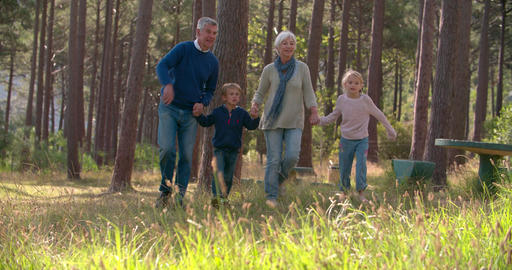 Senior couple walking with grandchildren in the countryside Footage