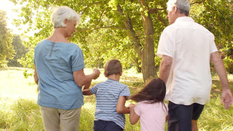 Grandparents walking in the countryside with their grandchildren Footage