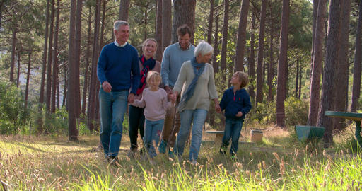Multi generation family walking in the countryside Footage