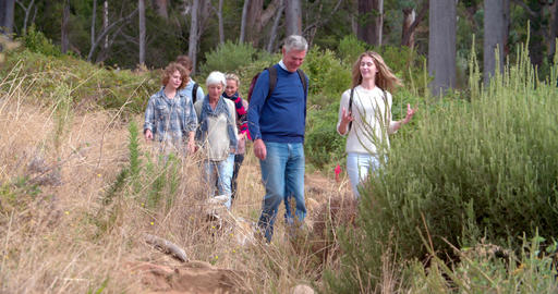 Multi-generation family walking on a country path Footage