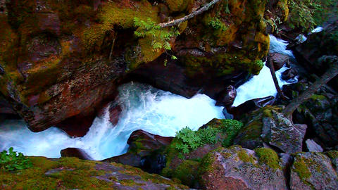 Avalanche Creek Waterfall Montana Footage