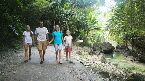 family walks on the walkway in rainforest Footage