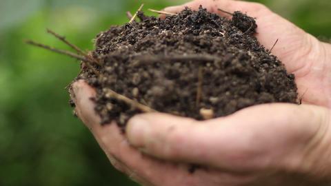 Farmers hands grabing earth Footage