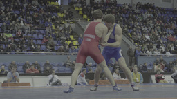 Athletes wrestlers competing at the wrestling tournament Footage