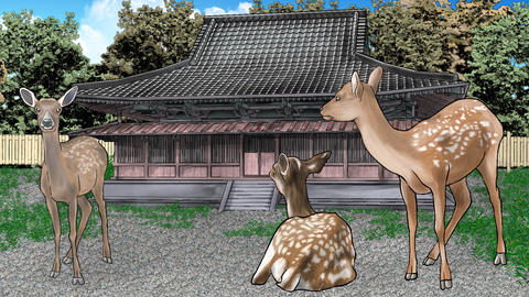 Deer temple CG動画素材