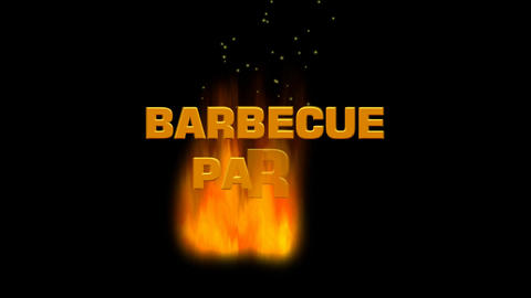 Barbecue party. Flames burning on a dark night background, sparks fly up, a Animation