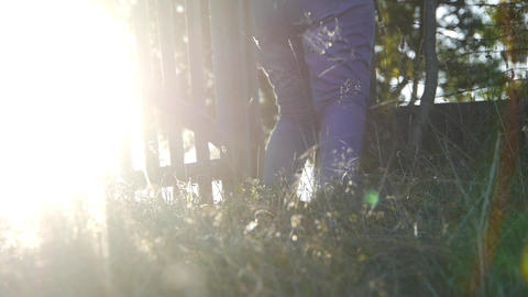 Woman open a wooden gate, out in the garden, go for the sun located sunset that  Footage