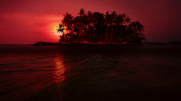 Amazing colors of tropical sunset with palm trees silhouettes on island Footage