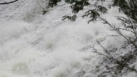 cascade Stock Video Footage