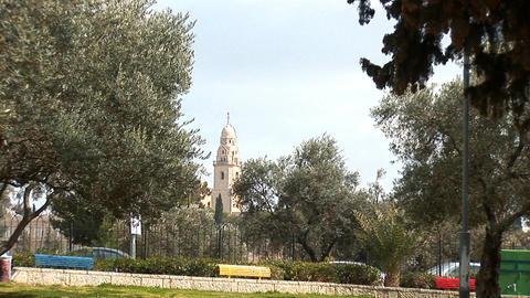 Jerusalem city park Stock Video Footage