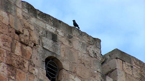 Tower of David in Jerusalem Footage
