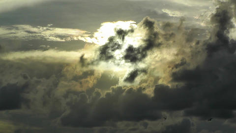 Birds Flying in Sunset Clouds Stock Video Footage