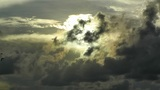 Birds Flying In Sunset Clouds stock footage
