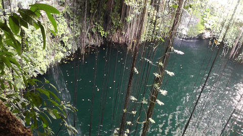 Dzonot Dzitnup Cenote in Mexico Yucatan 04 Stock Video Footage
