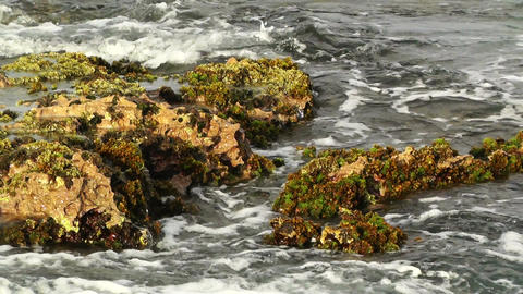 Waves and Rocks 05 Stock Video Footage
