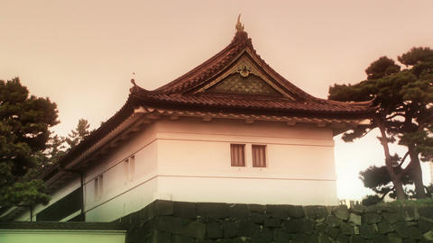 Tokyo Imperial Palace Japan 02 stylized Stock Video Footage