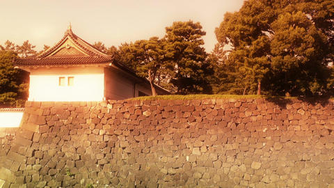 Tokyo Imperial Palace Japan 04 stylized Stock Video Footage