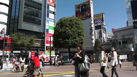 Tokyo Shibuya Japan 06 Stock Video Footage