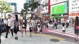 Tokyo Shibuya Japan 23 Footage