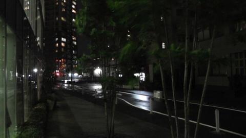 Typhoon in Yokohama Japan 02 handheld Stock Video Footage