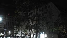Typhoon in Yokohama Japan 14 handheld Footage