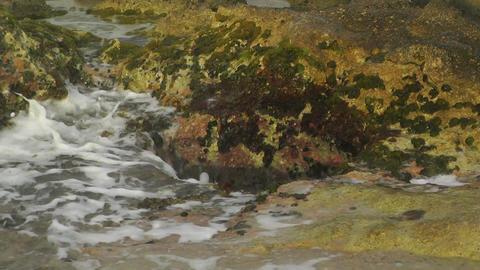 Waves and Rocks 02 Footage