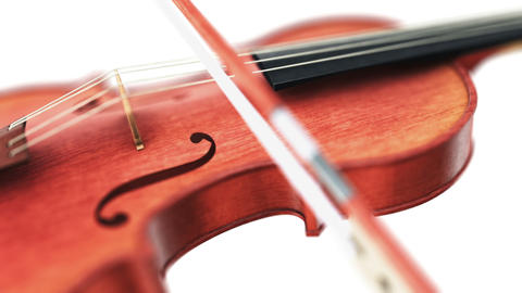 Violin, seamless loop on white background Stock Video Footage