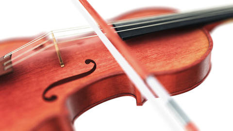 Violin, seamless loop on white background Animation