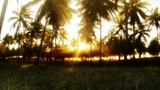 Time-lapse of Golden BrazilianTropical Sunset Footage