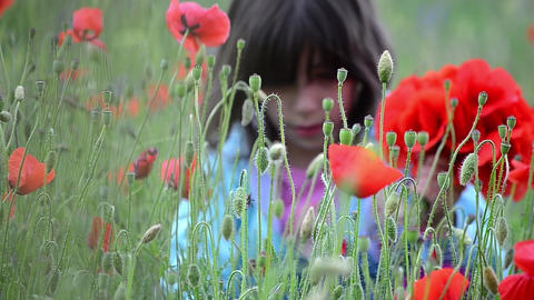 Girl sitting in a field with red poppies and gathers a bouquet for her mother 02 Footage
