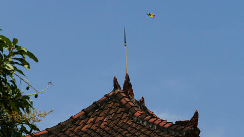 Yellow kite above the roof of temple at blue sky Footage