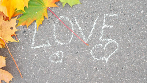 Wind blow out colourful maple leaves and reveal white text Love on asphalt Live Action