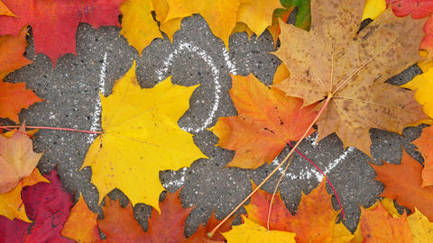Falling maple leaves cover and close word LOVE written on sidewalk GIF