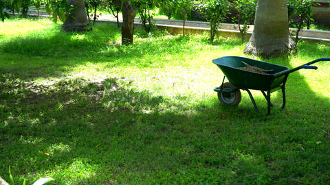 Man mowing grass with a lawn mower Footage