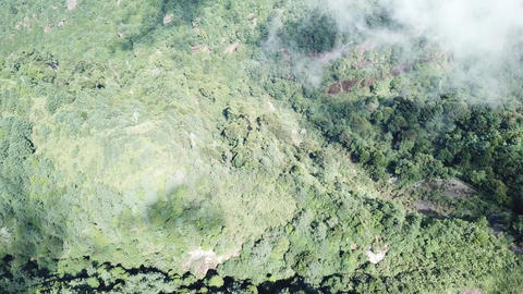 DJI MAVIC 4K Taiwan Chiyai Aerial Drone Video Alishan Big Tashan 20171021 2 Live影片