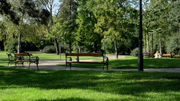people relax in the park (sitting)- nature (grass and trees) - benches - pavemen Footage