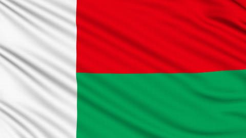 Madagascar Flag, with real structure of a fabric Animation