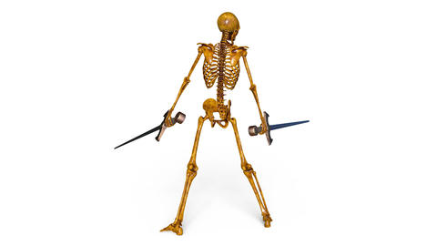Skeleton Animation