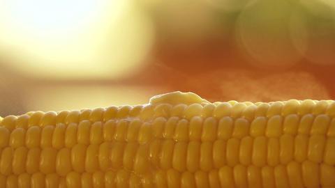 Butter melting on hot freshly boiled corn Footage