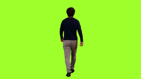 Back view of a walking man on green screen background, Chroma key Live Action