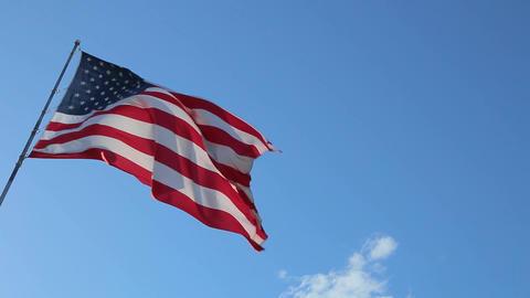USA American Flag Live Action