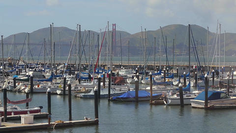 San Francisco sail boat harbor Footage