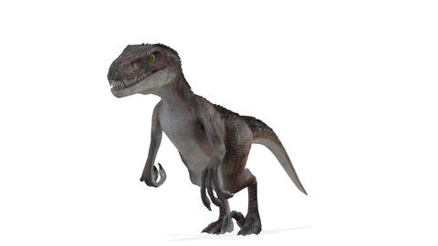 UHD-Dinosaur CG動画